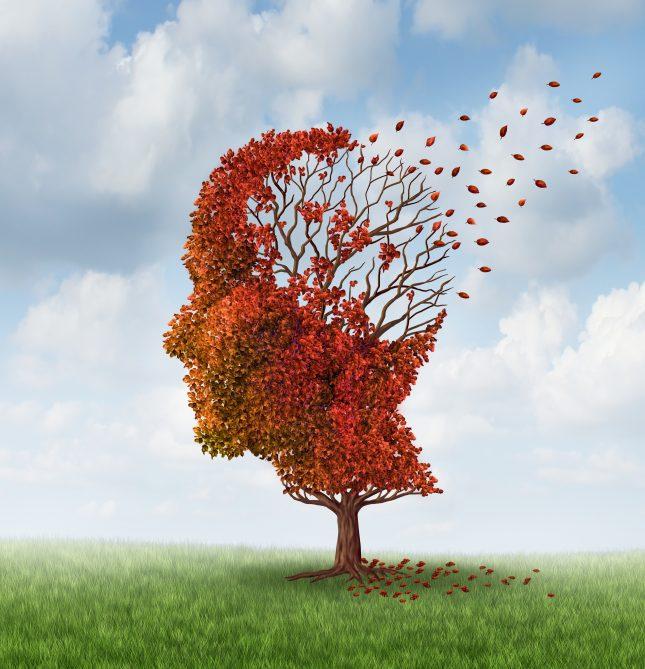 מחלת אלצהיימר - אילוסטרציה. הבדלים בין-אישיים בעמידות לטאו פתולוגי עשויים להיות חשובים להתקדמות המחלה