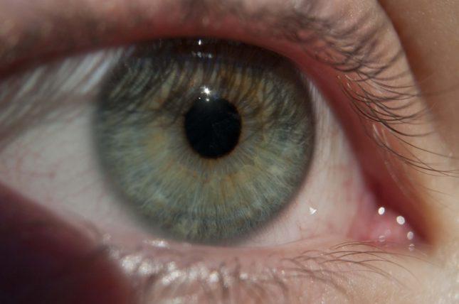 מחלות עיניים. אילוסטרציה