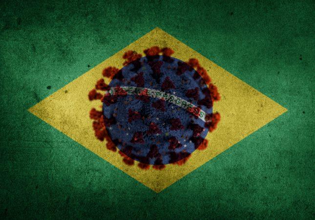 הוריאנט הברזילאי. אילוסטרציה