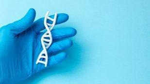 ריצוף גנטי. אילוסטרציה